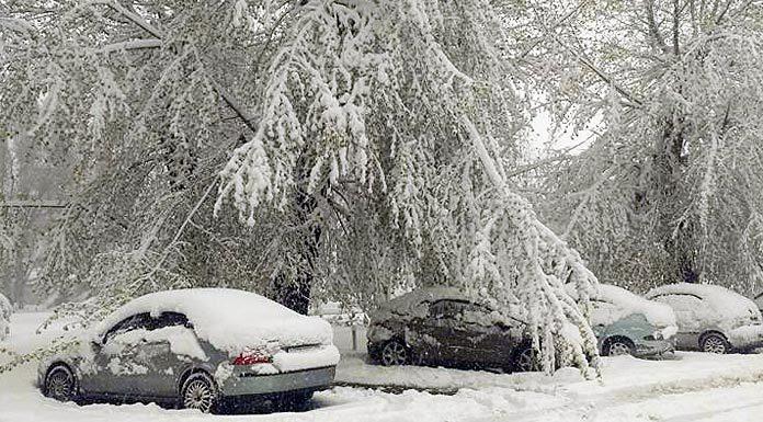 19 апреля 2017, Днепр, снегопад, погода. Главные новости сегодня
