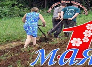 1 мая - день посадки картошки. Главные новости сегодня. Новости Украины, Европы и мира. HeadNews