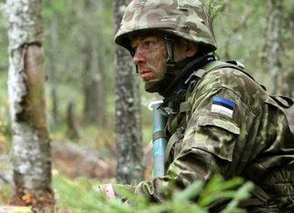 Эстония, солдат. Главные новости сегодня