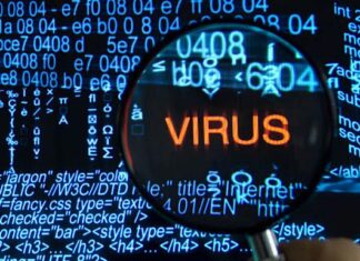 компьютерный вирус. Главные новости Украины сегодня без цензуры